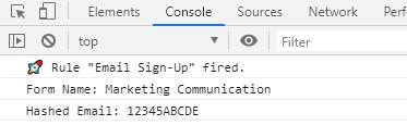 DLM Data Element Console Log